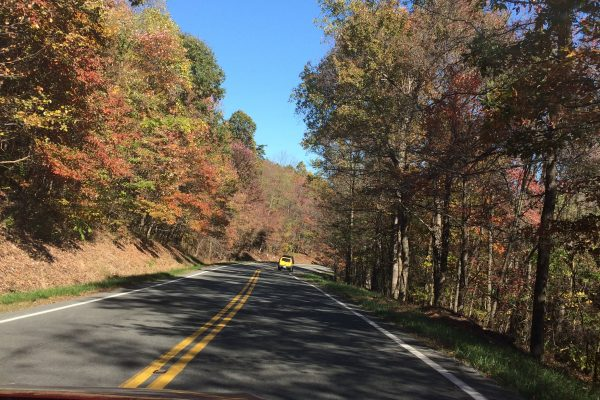 WV road with autumn leaves