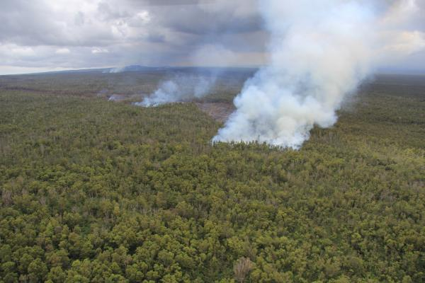 Smoke plume from the June 27th Kilauea lava flow, from USGS