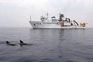 NOAA RV Oscar Elton Sette By Ari S. Friedlaender [Public domain], via Wikimedia Commons