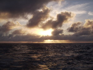 View of sunset with seabird from ship in NWHI by Judy K. Walker