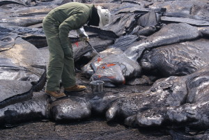 Geologist samples Kilauea lava from http://hvo.wr.usgs.gov/multimedia/