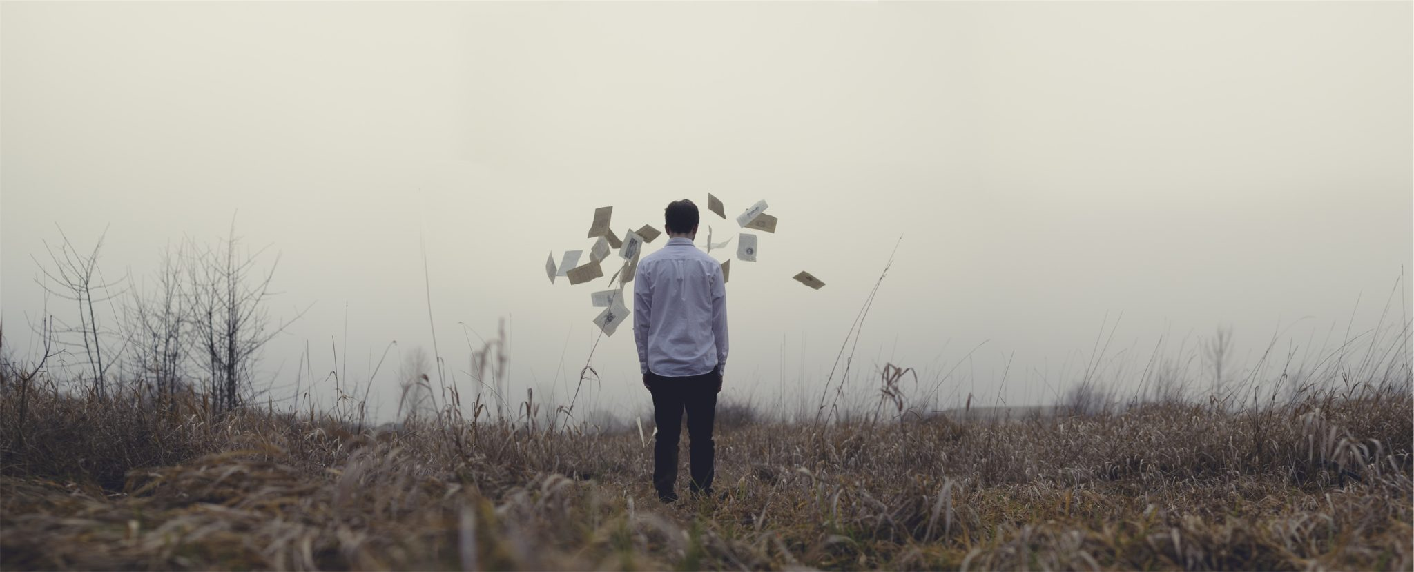 Guy throws papers in a field by Jake Melara from stocksnap.io