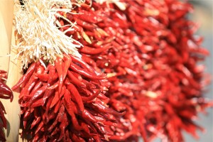 Bunch of dried chili peppers by Heijo Reinl from stocksnap.io