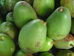 Avocados by By David Monniaux via Wikimedia Commons