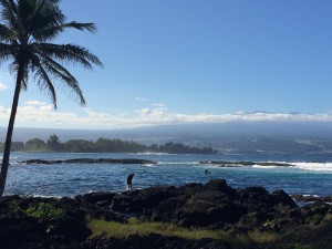 Richardson Beach Park, Hilo, HI, with Mauna Kea in the distance by Judy K. Walker