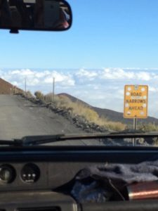Mauna Kea road sign by Judy K. Walker