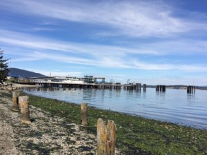 Anacortes_ferry by Judy K. Walker