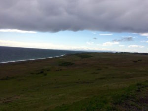 San Juan Island coast by Judy K. Walker