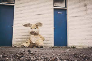 Homeless (costume) bunny by Ryan McGuire from stocksnap.io