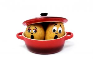 Potatoes with faces in a pot