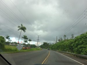 Main road 130 into lower Puna in June 2018