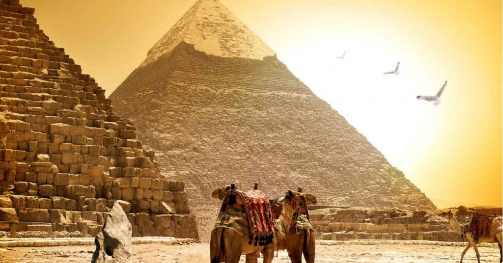 Camels and pyramids on a hot sunny evening